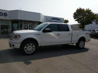Used 2013 Ford F-150 PLATINUM for sale in Mississauga, ON
