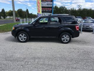Used 2011 Ford Escape Limited for sale in Newmarket, ON
