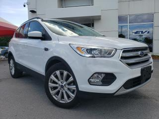 Used 2019 Ford Escape SEL for sale in Kingston, ON