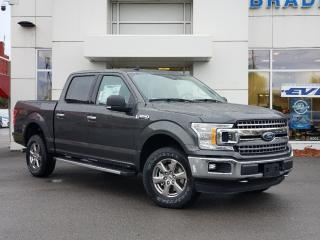 New 2020 Ford F-150 XLT for sale in Kingston, ON