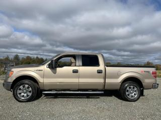Used 2011 Ford F-150 XTR for sale in Amos, QC