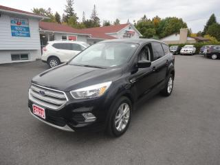 Used 2019 Ford Escape SE 4WD for sale in Ottawa, ON