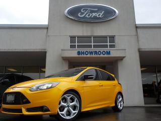 Used 2013 Ford Focus ST Base for sale in Mount Brydges, ON