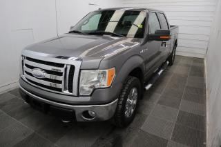 Used 2009 Ford F-150 XLT for sale in Winnipeg, MB