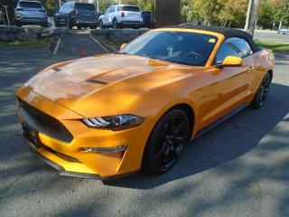 Used 2019 Ford Mustang EcoBoost Premium for sale in Ottawa, ON