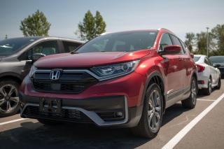 New 2020 Honda CR-V Sport 4WD CRV 5 DOORS for sale in Woodstock, ON