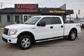 Used 2010 Ford F-150 FX4 for sale in Saskatoon, SK
