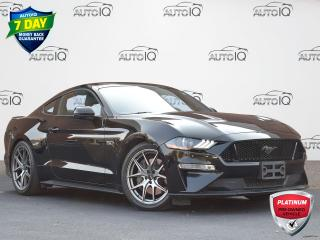 Used 2019 Ford Mustang GT Premium MANUAL   LOW KM   PREMIUM   LEATHER   GPS   HEATED/COOLED SEATS for sale in Waterloo, ON