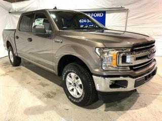 New 2020 Ford F-150 XL for sale in Peace River, AB