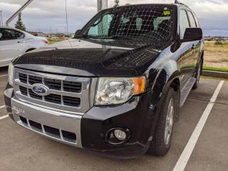 Used 2010 Ford Escape Limited for sale in Medicine Hat, AB