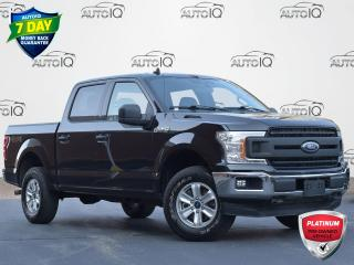 Used 2019 Ford F-150 XLT CREW CAB   6 SEATS   ANDROID AUTO/APPLE CARPLAY   BACKUP CAM for sale in Waterloo, ON