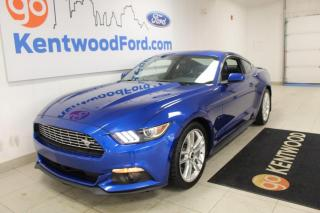 Used 2017 Ford Mustang EcoBoost Premium 2dr RWD Fastback for sale in Edmonton, AB