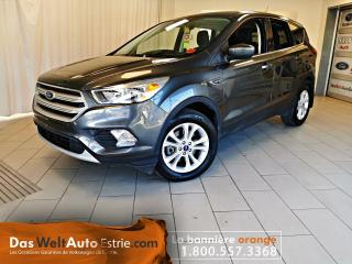 Used 2019 Ford Escape SE Traction Integral, Automatique for sale in Sherbrooke, QC