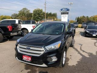 Used 2019 Ford Escape SE for sale in Aurora, ON