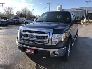 Used 2014 Ford F-150 XLT XTR PACKAGE for sale in Winnipeg, MB
