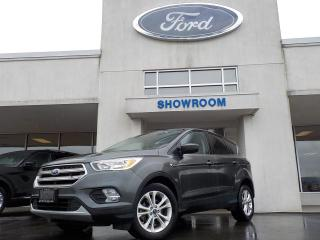 Used 2017 Ford Escape SE for sale in Mount Brydges, ON