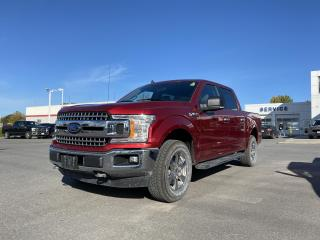 Used 2019 Ford F-150 XLT 302 - 4x4, SEAT HEAT, NAV, PRO TRAILER ASSIST for sale in Kingston, ON