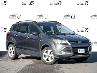 Used 2015 Ford Escape SE - Upgrade Package - Local Trade for sale in Welland, ON
