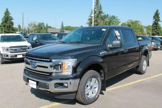 New 2020 Ford F-150 XLT 301A | 4x4 Supercrew | 3.3L PFDI | Auto Start/Stop | Pre-Collision Assist | Rear View Camera | for sale in Edmonton, AB