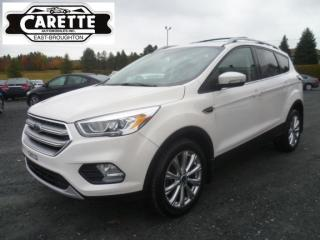 Used 2017 Ford Escape Titanium awd cuir-toit-gps for sale in East broughton, QC