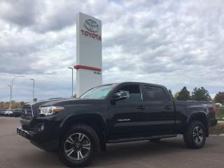 Used 2019 Toyota Tacoma TRD Sport for sale in Moncton, NB