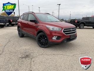 Used 2017 Ford Escape SE | 1.5L ECOBOOST ENGINE | SPORT PACKAGE | CONVENIENCE PACKAGE for sale in Kitchener, ON