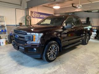 Used 2019 Ford F-150 XLT 4WD SUPERCAB 6.5' BOX for sale in Kingston, ON