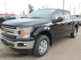 New 2020 Ford F-150 XLT 301A | 4x4 SuperCrew | 5.0L V8 | Auto Start/Stop | Pre-Collision Assist | Rear View Camera | for sale in Edmonton, AB