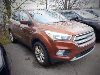 Used 2017 Ford Escape SE for sale in Saint John, NB