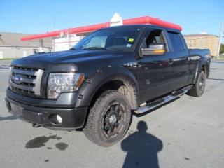 Used 2010 Ford F-150 FX4 for sale in Dartmouth, NS