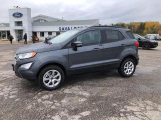 New 2020 Ford EcoSport SE for sale in Bracebridge, ON