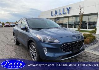 New 2020 Ford Escape SEL for sale in Tilbury, ON