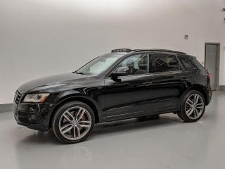Used 2016 Audi SQ5 DYNAMIC PACKAGE/NAVIGATION/PUSH START! for sale in Toronto, ON