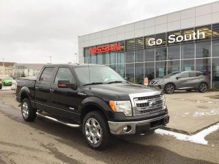 Used 2013 Ford F-150 XLT for sale in Edmonton, AB