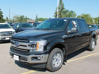 New 2020 Ford F-150 XLT 300A | 4x4 Supercrew | 3.3L PFDI | Auto Start/Stop | Pre-Collision Assist | Rear View Camera | for sale in Edmonton, AB