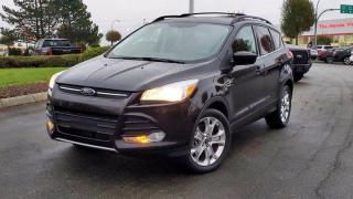 Used 2013 Ford Escape SE for sale in Abbotsford, BC