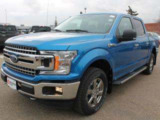 New 2020 Ford F-150 XLT 302A | 4x4 SuperCrew | 5.0L V8 | Auto Start/Stop | Pre-Collision Assist | Rear View Camera | Reverse Sensing System | Trailer Tow Package | Navigation | for sale in Edmonton, AB