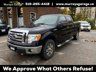 Used 2009 Ford F-150 XLT 4.6L for sale in Guelph, ON
