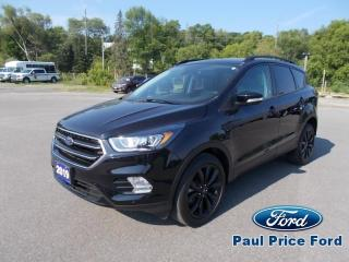 Used 2019 Ford Escape Titanium AWD for sale in Bancroft, ON