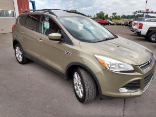 Used 2013 Ford Escape SE for sale in Dunnville, ON