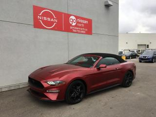 Used 2019 Ford Mustang GT / MUSTANG / CONVERTIBLE for sale in Edmonton, AB