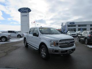 Used 2019 Ford F-150 for sale in Drayton Valley, AB