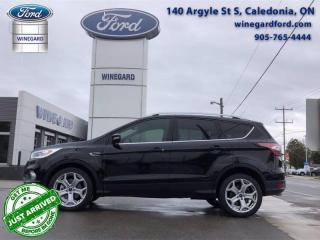 Used 2017 Ford Escape Titanium for sale in Caledonia, ON