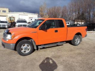 Used 2012 Ford F-150 for sale in Winnipeg, MB