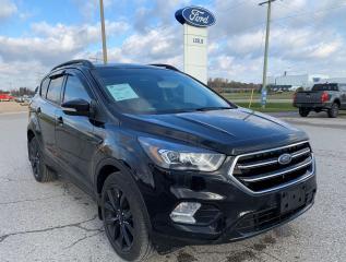 Used 2018 Ford Escape Titanium for sale in Harriston, ON