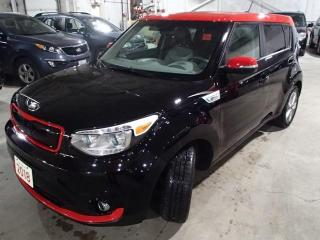 Used 2018 Kia Soul EV SOUL EV LUXURY NAV LEATHER AND MORE for sale in Nepean, ON