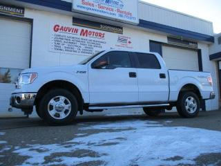Used 2014 Ford F-150 XLT LOADED 77K MINT for sale in Swift Current, SK