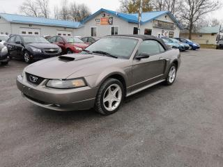Used 2002 Ford Mustang GT Premium for sale in Madoc, ON