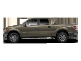 Used 2010 Ford F-150 XLT for sale in Brandon, MB