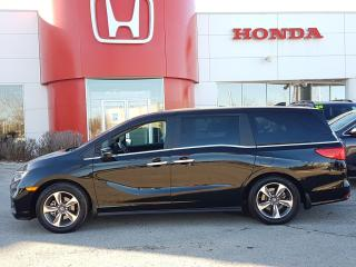 Used 2019 Honda Odyssey EX NO ACCIDENTS for sale in Winnipeg, MB